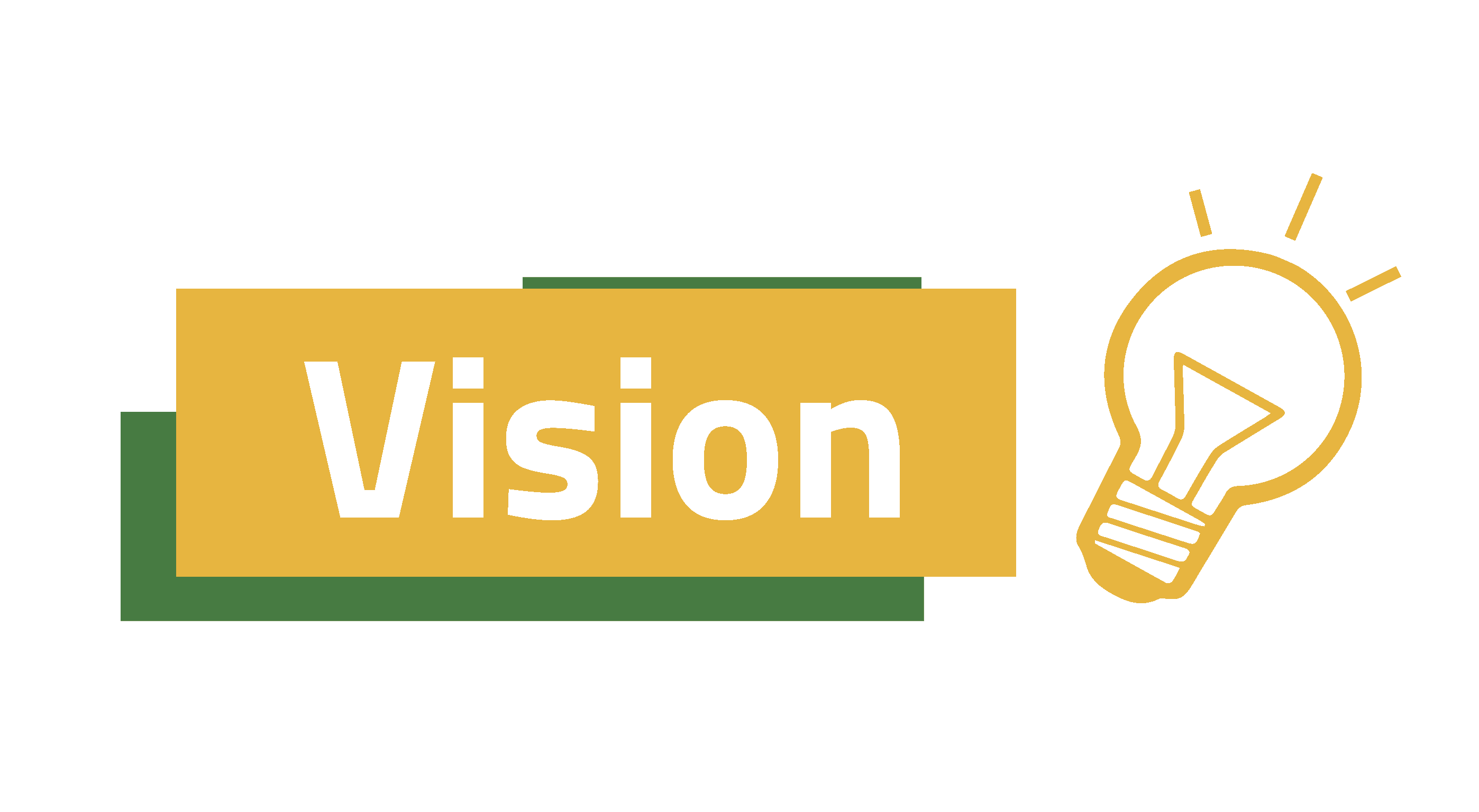 Vision 1 - About us